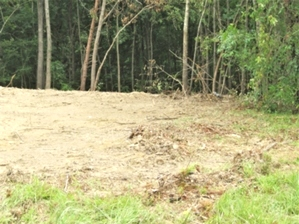 Westhaven Dr., Williamsburg | 4.7 ac. in the city limits $17,500 (sewer, water, gas available)