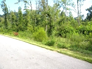 Sold!  3.4177 acres on Moore Rd in Highland Park in Williamsburg   possible multiple sites $49,000