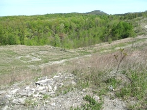 Sale Pending!!  MASON HOLLOW RD, FABER | Fabulous site for hunting, four wheeling and fishing!