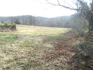 2694 Buck Creek Road. | 10 acres +/- that lays really well. Road frontage, well on property, county water available