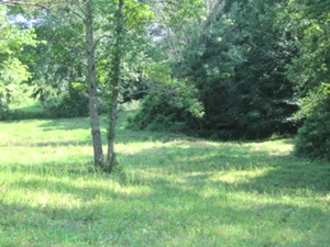 Logan Rd.  Your farm and home can be located on this 12 acres in a nice rural community.